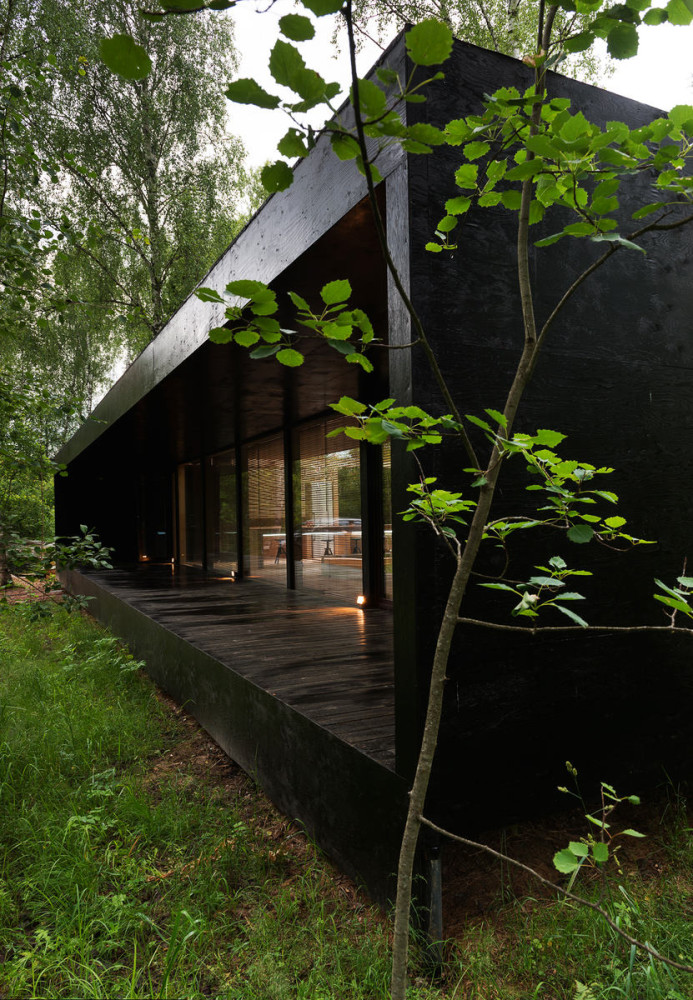 Архитектура в цвете черный. Архитектура в стилях: минимализм, экологический стиль.